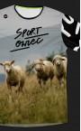 sport owiec